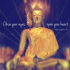 There's no greater wisdom than that which flows from the heart.  www.myinnermaster.com Inner Strength, Close Your Eyes, Wisdom, Live, Heart, Movie Posters, Movies, Films, Film
