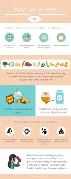 An illustrated guide to baby led weaning #infographic