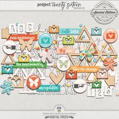 Project Twenty Sixteen | January Elements