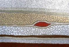 Kurun Warun River Bed