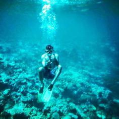 Tearing it up in the Great Barrier Reef!  #greatbarrierreef #foundnemo #couldntfinddory #australia by viragedesi http://ift.tt/1UokkV2