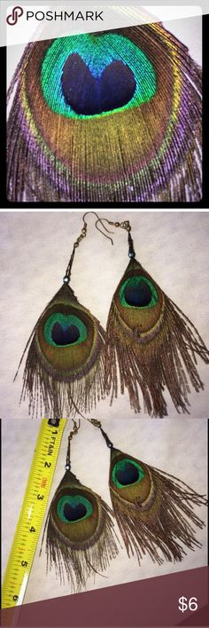 Peacock Feather Earrings Peacock Feather Earrings. Worn once. Great condition Jewelry Earrings