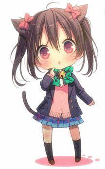 Nico cat