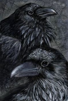 The Raven is a very sly intelligent bird and a Totem animal to some tribes and people. I really like this artwork. Crow Art, Raven Art, Bird Art, Hugin Munin Tattoo, Rabe Tattoo, Crow Painting, Quoth The Raven, Vegvisir, Jackdaw