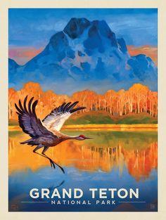 Anderson Design Group – American National Parks – Grand Teton National Park: Sand Hill Crane