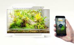 The Reptile Keeper's Christmas List: a Biopod automated vivarium!
