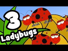 Songs about bugs and insects for preschool, pre-k, and kindergarten kids. The best teacher approved songs about butterflies, ladybugs, and more! Preschool Songs, Craft Activities For Kids, Toddler Activities, Preschool Themes, Counting Songs For Kids, Kids Songs, Bug Songs, Harry Kindergarten, Rhymes For Kids