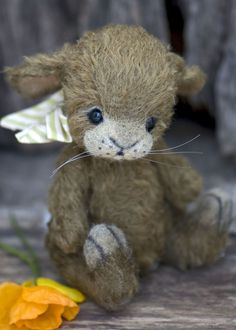 Three O'Clock Bears: Dusty the Bunny available for adoption