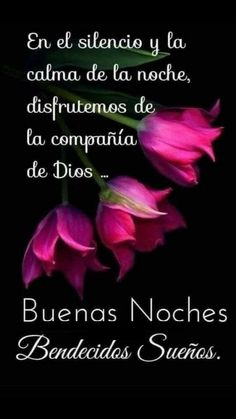 Cute Good Night Quotes, Good Night Prayer, Good Night Blessings, Good Morning Messages, Good Morning Quotes, Good Night Flowers, Spanish Inspirational Quotes, Animated Love Images, Good Night Greetings