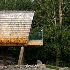 Forest School by Robert Gaukroger