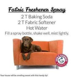 "Do you need a fabric spray to make your cushions and rugs smell nice? As my little dog likes to get on the couch and snuggle in the cushions I am always spraying them. Here is a home made spray to try. ✔ Like ✔ ""Share"" ✔ Tag ✔ Comment ✔ Follow me Friend or follow me at~~> www.facebook.com/fredadax Order Skinny Fiber here --->www.fsfthin.sbc90.com/ Take a free tour here~~> www.fsfthin.sbcfreetour.com"