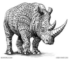 adult coloring pages rhino - Google Search