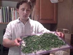 Luv John Kohler, the cheerful gardner! How to Dry Moringa and Make Green Powder - A New Raw Super Food Check out his vids on youtube!