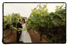 wine kisses by kella macphee