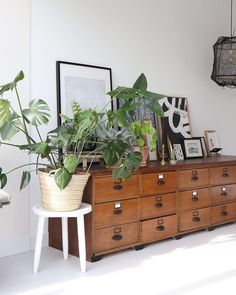 Happy urban jungle in the daylight yesterday at my home 😊 - Today I've a huge challeng Interior Inspiration, Room Inspiration, Estilo Interior, Interior Decorating, Interior Design, Room Interior, Piece A Vivre, Deco Design, Types Of Houses
