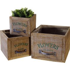 Hold lush topiaries and blossoming blooms in style with this antiqued drawer box, perfect for inspiring farmstand appeal in your entryway or sunroom. Diy Planter Box, Farm Stand, Wood Drawers, Wood Rounds, Window Boxes, Diy Box, Container Plants, Upcycled Furniture, Joss And Main