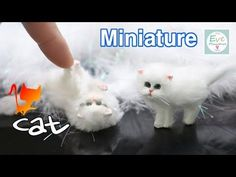진짜같은 ✔미니어쳐 고양이 만들기 Miniature Animal ✔Cat Polymer clay Tutorial - YouTube