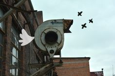 'Berlin Bird' by Tineke Meirink www.stop-watch.nl