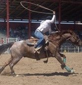 #rodeo! #Travel Nevada USA multicityworldtravel.com We cover the world over 220 countries, 26 languages and 120 currencies Hotel and Flight deals.guarantee the best price