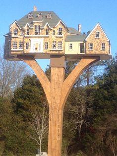 thomas+burke+birdhouses | Home tweet home Pictures - CBS News