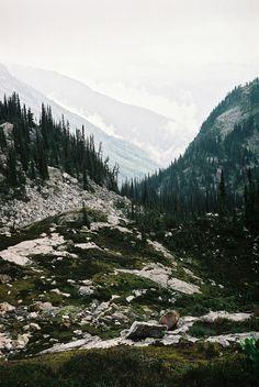 mount revelstoke national park, british columbia #nature #landscapes