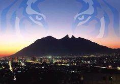 Monterrey zona tigre uanl