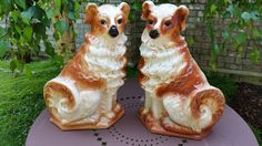 Antique Staffordshire Dogs  Pair of English by WilliamsAntiquesCo