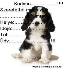 Kutyás dolgok Cute Animals, Invitations, Dogs, Pretty Animals, Cutest Animals, Cute Funny Animals, Save The Date Invitations, Pet Dogs, Adorable Animals