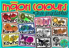 Green Grubs Garden Club: Let's celebrate Māori language week! Waitangi Day, Maori Words, Maori Symbols, Color Songs, Maori Designs, Samoan Designs, Preschool Songs, Maori Art, Samoan Tattoo