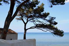 Golfo di Baratti  Italy