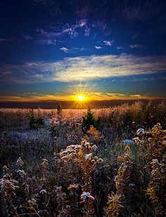 a twinkling sunrise!