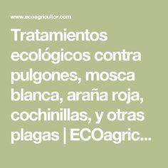 Tratamientos ecológicos contra pulgones, mosca blanca, araña roja, cochinillas, y otras plagas | ECOagricultor