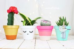 Macetas decoradas