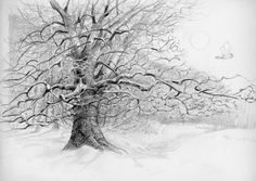 Pencil Drawing Of A Tree Photo to <b>pencil sketch</b>, <b>drawing trees</b> and <b>pencil drawings</b> on ...
