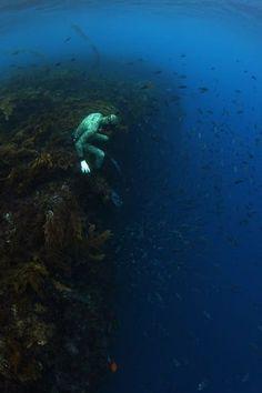 fotos del fondo del mar oceano