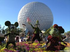 Epcot Flower & Garden Review: Both Kids and Adults Will Enjoy This Year's Festival #disney