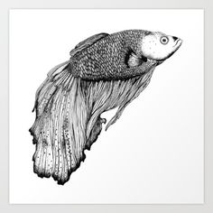 Siamese fighting fish illustration by Kriszti Balla #siamesefightingfish #fish #illustration #krisztiballa #penandink #ink #dotwork #linework #underwater #nature