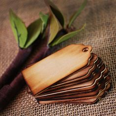 100 Blank Wooden Wishing Tree Tags With Rustic Twig Pen