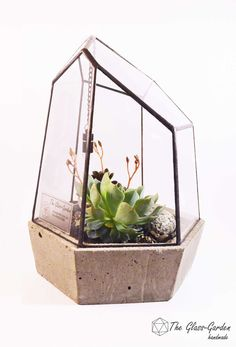 Glass terrariums, ring boxes and candle holders by StudioTheGlassGarden Closed Terrarium Plants, Garden Terrarium, Glass Terrarium, Glass Garden, Terrariums, Indoor Water Garden, Indoor Plants, Mosaic Glass, Glass Art