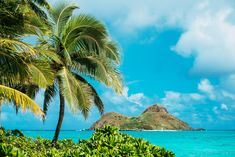 lanikai_beach-oahu-hawaii-luke_shadbolt-nicole_warne-1