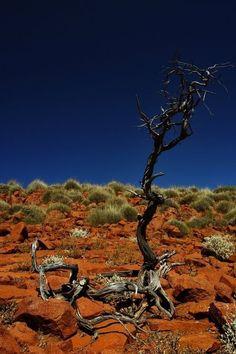 Mt Ive, South Australia