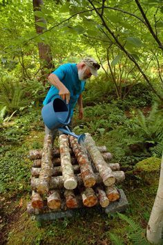 How to grow shiitake mushrooms on an organic system that will produce for years - photo: Watering Alder Logs 2 Add productivity in a tiny garden with 3 stacked layers of shiitake logs. Weil growing shitake mushrooms in B. Shiitake mushrooms can grow seemi Growing Shiitake Mushrooms, Growing Mushrooms At Home, Garden Mushrooms, Edible Mushrooms, Stuffed Mushrooms, How To Grow Mushrooms, Growing Plants, Growing Vegetables, Farm Gardens