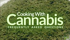 Cooking with Cannabis: Frequently Asked Questions About Putting Marijuana In Edibles