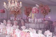 Marina Inn Tent Pink Wedding Iowa Party Rental 1
