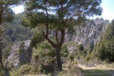 Türkei , im Gebirge