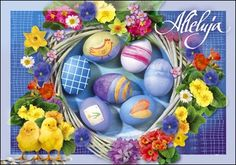 Easter Eggs, Cards, Anna, Holidays, Humor, Fashion, Moda, Holidays Events, Fashion Styles