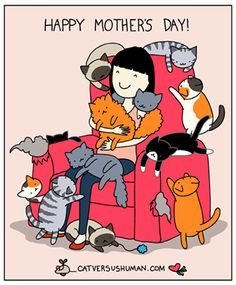 Happy mother's day for crazy cat people I Love Cats, Cute Cats, Funny Cats, Crazy Cat Lady, Crazy Cats, Cat Vs Human, Gatos Cats, Cat Comics, Photo Chat