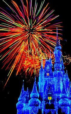 Disney - Happiest Place on Earth. :)