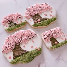 Image may contain: 1 person, food Blossom Cookies, Tree Cookies, Flower Cookies, Cupcakes, Cupcake Cookies, Sugar Cookies, Easter Cookie Recipes, Easter Cookies, Cookie Frosting