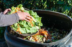 Conoce qué se está haciendo en el mundo para frenar el desperdicio de alimentos. Nestlé #RSE http://www.expoknews.com/detener-el-desperdicio-de-alimentos-una-batalla-perdida/